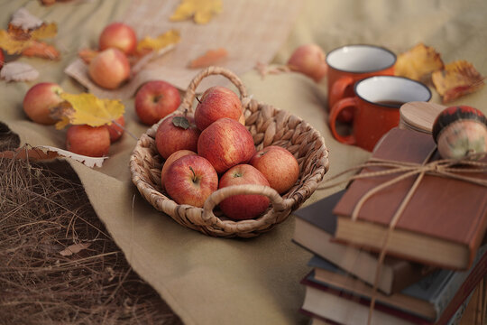 Apples in a basket, a old novels book, a couple of cups on an autumn picnic, autumn still life, the concept of coziness in a rural location during harvesting