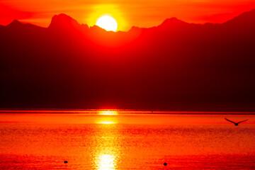 lever du soleil sur les Alpes depuis Chambésy