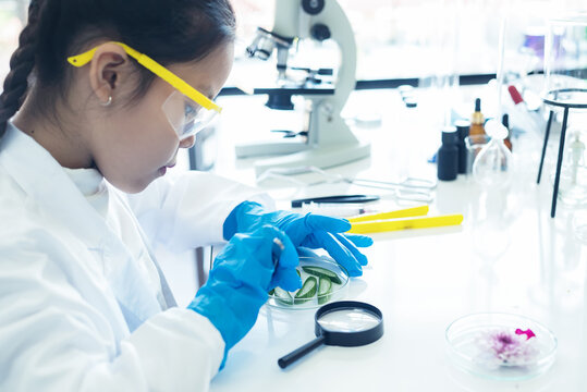 Asian girl leaning and education with woman science lab research flower with microscope for Natural alternative herb and essential oil