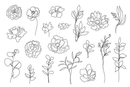 Vector set of hand drawn, single continuous line flowers, leaves. Art floral elements. Use for t-shirt prints, logos, cosmetics