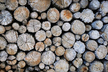 old firewood texture