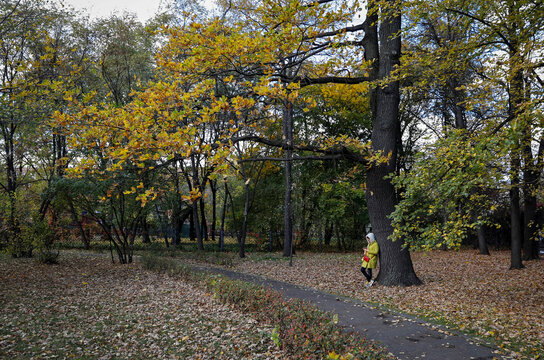 A woman checks her mobile phone in a park full of autumn coloured leaves in Moscow