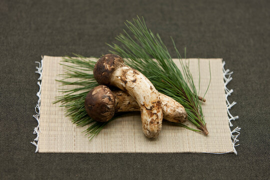 Matsutake mushrooms and pine leaves on the bamboo mat.