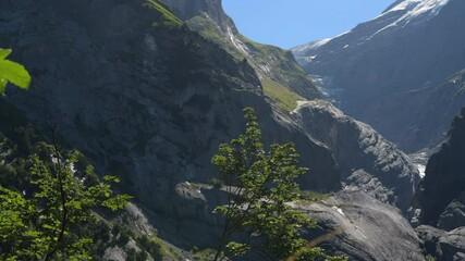 Wall Mural - Swiss Alps Grindelwald Summer Landscape
