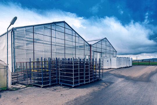 Modern greenhouse complex