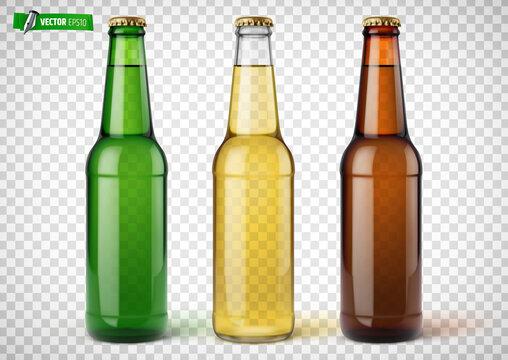 Bouteilles de bière vectorielles sur fond transparent