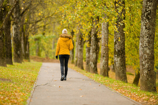 One young adult woman in yellow jacket slowly walking through alley of trees in autumn day at park. Spending time alone in nature. Peaceful atmosphere. Back view.