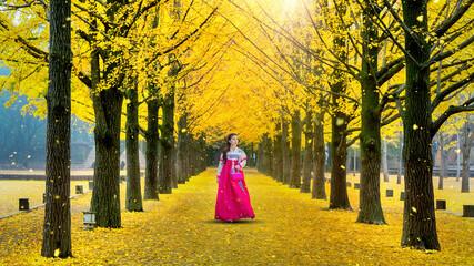Wall Mural - Beautiful girl wearing Korean traditional hanbok at row of yellow ginkgo tree in Nami Island, South Korea.