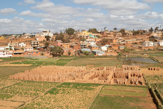 View of bricks stacked in rice field with city in background