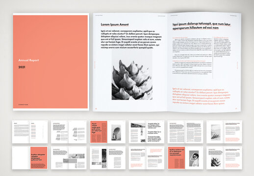 Colorful and Simple Annual Report Layout