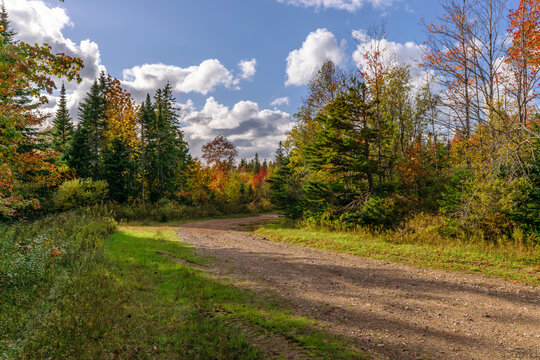 Dirt road on a sunny autumn day - A dirt road through the woodland of rural Cape Breton, Nova Scotia, Canada on a beautiful autumn day.