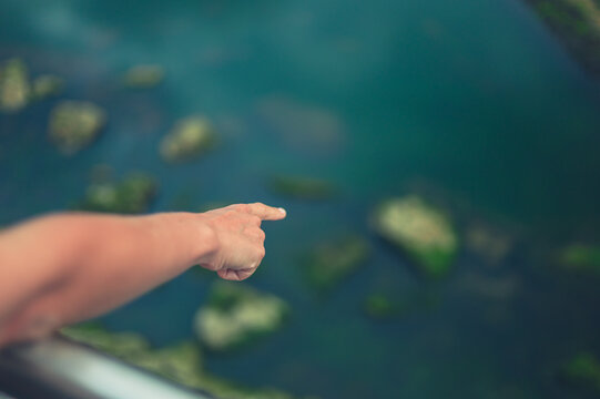 Hand of a young woman pointing at water