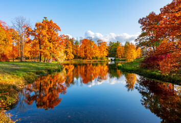 Scenic autumn landscape reflected in water in Alexander park, Pushkin (Tsarskoe Selo), Saint Petersburg, Russia
