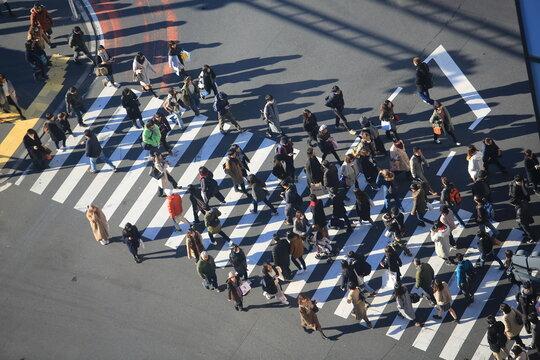 Shibuya street in japan cityscape