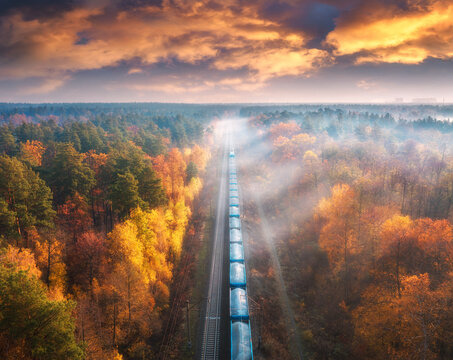 Aerial view of freight train in beautiful forest in fog at sunset in autumn. Landscape with railroad, foggy trees, trail and colorful sky with clouds. Top view of moving train in fall. Railway station
