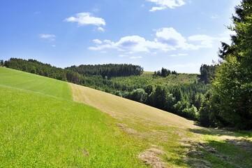Lato, schnąca na stoku na łące skoszona trawa