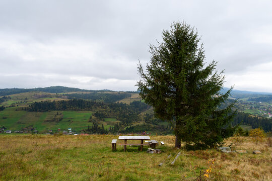 Table for rest and a fir tree in a meadow among beautiful mountains.
