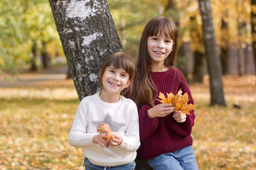 Two girls in a park. The children hold leaves in the autumn forest.