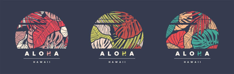 Aloha Hawaii. Set of three colorful tropical vector t-shirt designs, posters, prints, labels