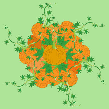 Vector illustration of a pile of pumpkins pattern, Autumn and Halloween concept.