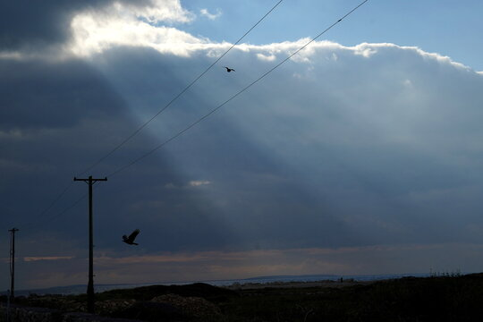 Birds fly past electricity poles as sunlight breaks through dark clouds in Spiddal