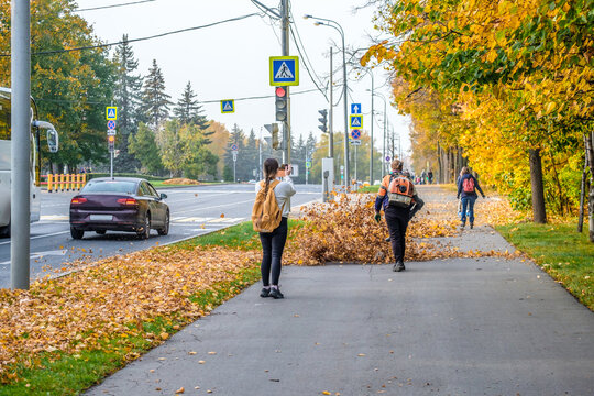 A utility worker uses a blower to remove fallen leaves in an alley in a park. Yellow leaves are flying in the air. The girl behind takes a picture of the worker using a smartphone. Seasonal work.