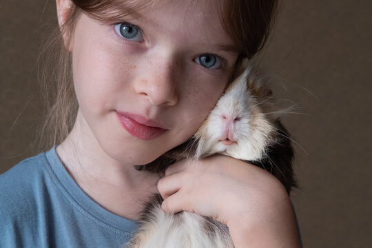 Little girl holding a guinea pig in her arms, love of children and animals, pet concept