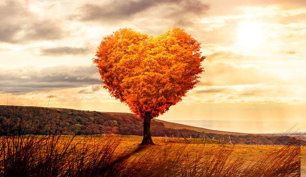 Baum in Herzform in einer surrealen Landschaft bei Sonnenuntergang