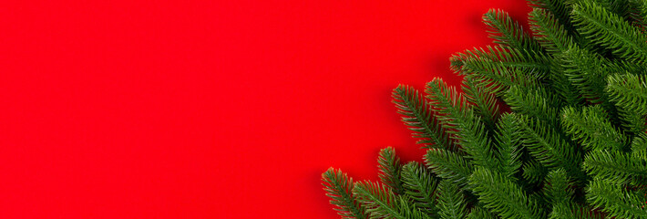 Wall Mural - Top view Banner of green fir tree branches on colorful background. New year holiday concept with empty space for your design
