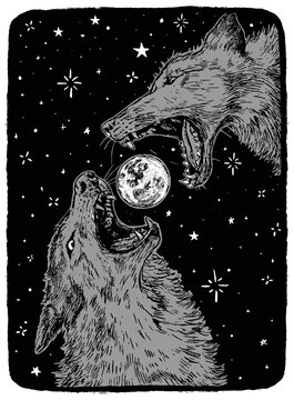 Angry wolves and the moon. Hand drawn vector illustration in monochrome colors. Abstract retro graphic drawing isolated on white. Single element for design prints, shirt, poster, typography, decor.