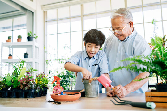 Asian retirement grandfather and his grandson spending quality time together insulated at home. Enjoy taking care of plants, watering. Family bonding between old and young. Concept of quarantine.