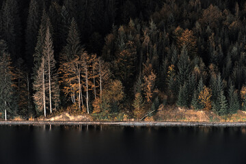 Night landscape in the Carpathian mountains. Bukovel, Ukraine.