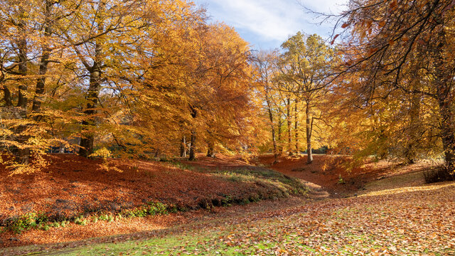 Der goldene Herbst mit seinen prachtvollen Farben