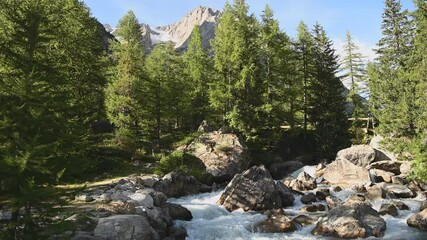 Wall Mural - Scenic Vel Ferret Valley Alpine River and Woodland in the Italian Dolomites