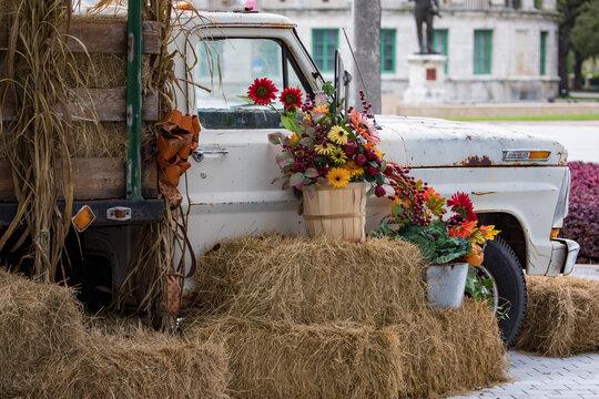 Old truck - harvest season - fall - October