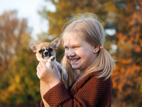 A child with a small dog. Portrait