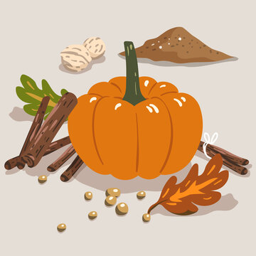pumpkin spice ingredients, Halloween vibes vector elements for promotion, recipe, cookbook, dessert and snack baking. autumn color palette for greeting card, banner, wrapping paper, gift wrap