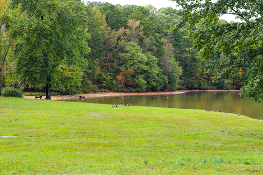 gorgeous landscape with a vast still lake and lush green and autumn colored trees at Sweetwater Creek State Park in Lithia Springs Georgia