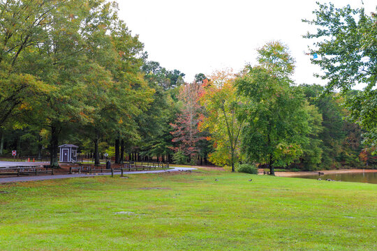 gorgeous autumn colored and lush green trees in that park near a lake at Sweetwater Creek State Park in Lithia Springs Georgia