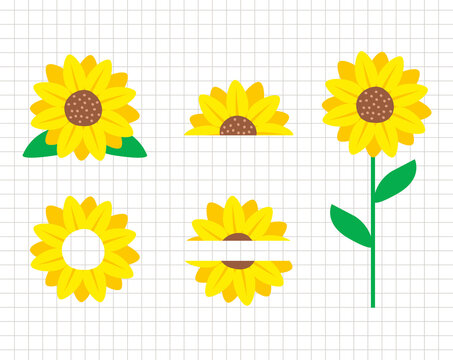 Sunflower vector collection. Half sunflower design. Flower decor. Flat illustration. Layered cutting files.  Suitable for cutting software. Cricut, Silhouette