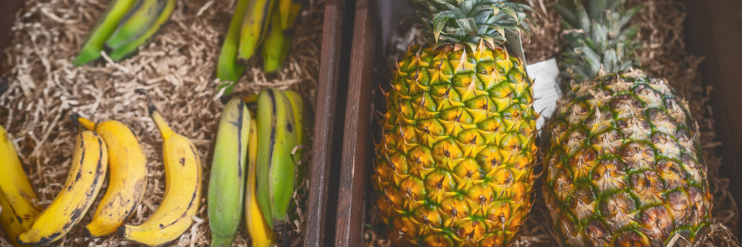 Organic fruits at farmer's market. Banner panoramic of pineapples and bananas natural food. Fruit in wooden baskets.