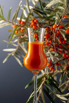 A glass of sea buckthorn vitamin juice with fresh sea buckthorn berries on a branch.