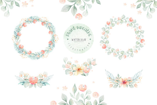 Flower watercolor tropical wreath set with jungle flowers AMARYLLIS and leaves. Wedding ANTHURIUM romantic tropic frame. Invitation design