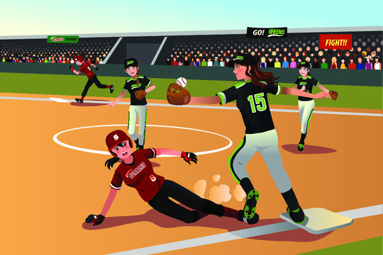 Womens playing baseball vector image