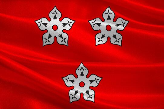 Flag of Ancenis in Loire-Atlantique of Pays de la Loire is a Region of France