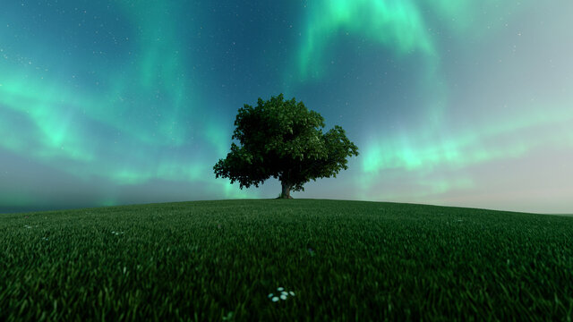Green northern lights and silhouette of a tree. Starry sky and polar lights. Night landscape with bright aurora borealis, tree, lake. 3d rendering