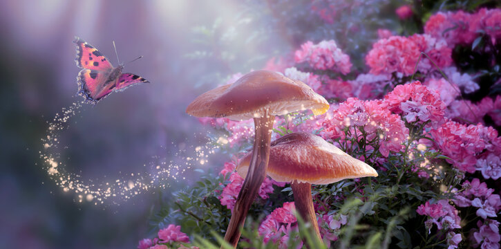 Fantasy Magical Mushrooms and Butterfly in enchanted Fairy Tale dreamy elf Forest with fabulous Fairytale blooming pink Rose Flower on mysterious Nature background and shiny glowing moon rays in night
