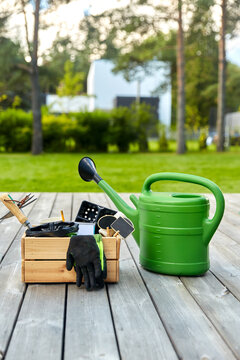 gardening, farming and planting concept - wooden box with garden tools, watering can and seedling in summer