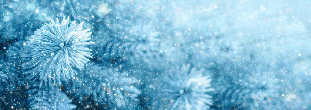 Cristmas background with pine tree branches and snowfall.