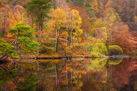 Autumn in Lake District.Reflection of colourful trees in calm water of lake.Seasonal nature background, wallpaper.Idyllic landscape scene.